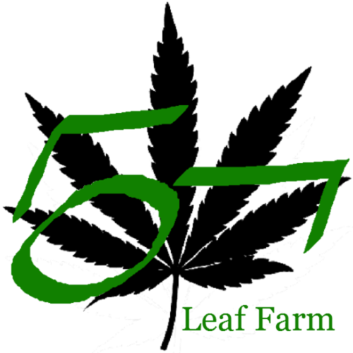 Large large leaf farm with text logo